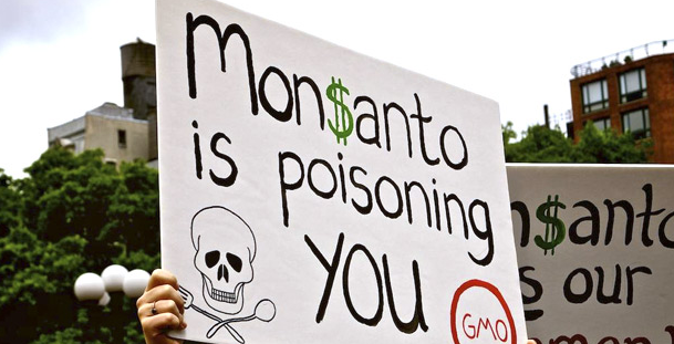 Monsanto-Lawsuit