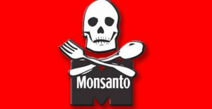 The New Monsanto Logo